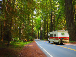 RV driving down windy road in the woods