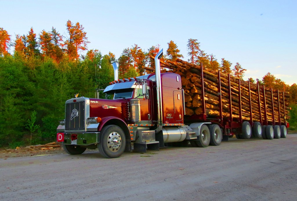 truck pulling logs up a gravel road
